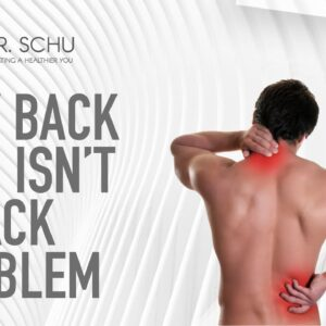 Chiropractor in Jacksonville | Why Back Pain isn't a Back Problem