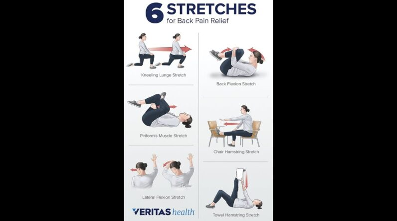 The Benefits of Stretching: From Flexibility to Stress Relief