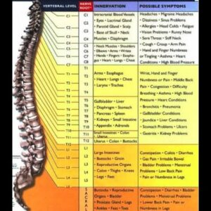 Some Known Details About Headaches And Migraines - Chiropractic Works - Chiropractor