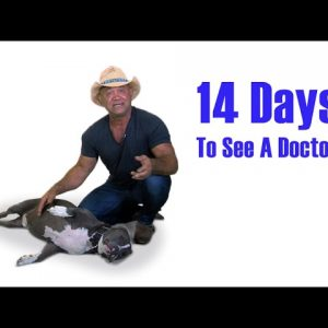 Why You Need To Seek Medical Care within 14 Days of an Auto Accident